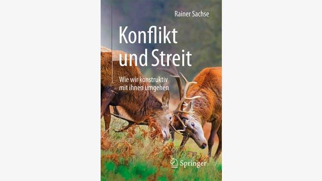 Rainer Sachse: Konflikt und Streit