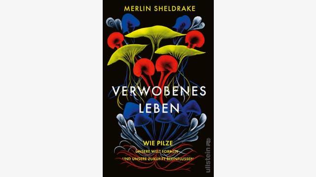 Merlin Sheldrake: Verwobenes Leben