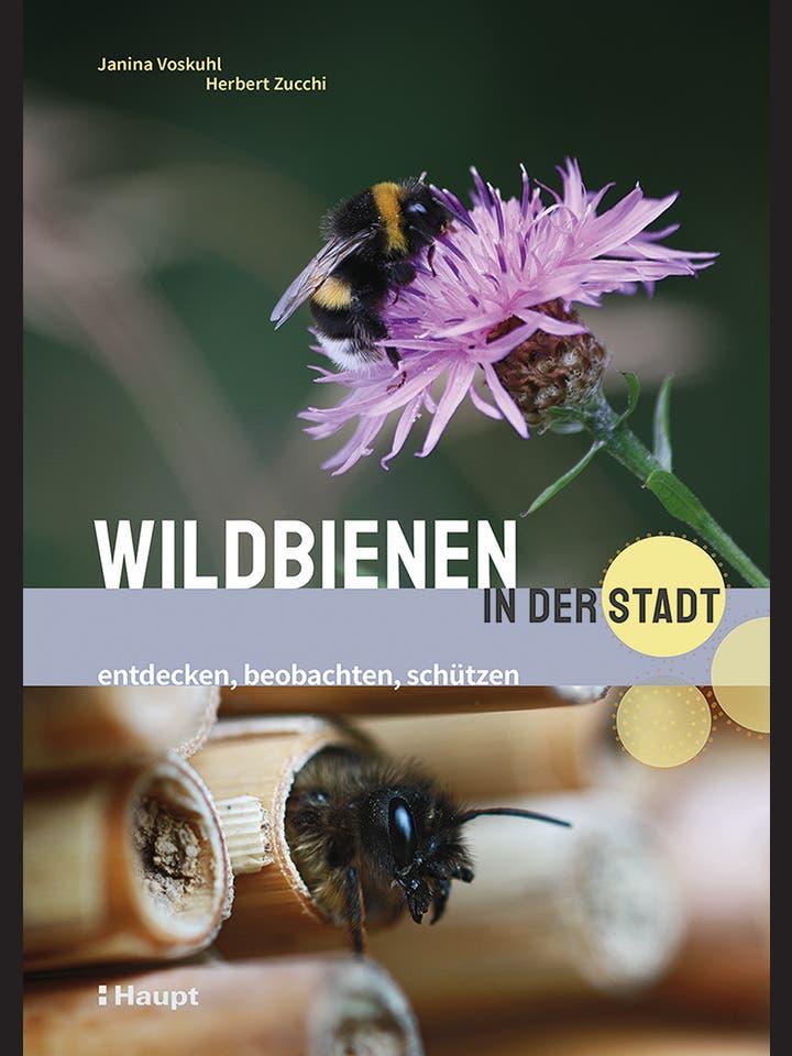 Janina Voskuhl, Herbert Zucchi: Wildbienen in der Stadt