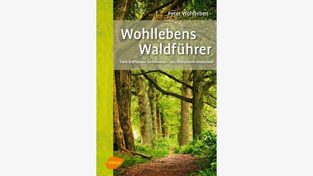 Peter Wohlleben: Wohllebens Waldführer