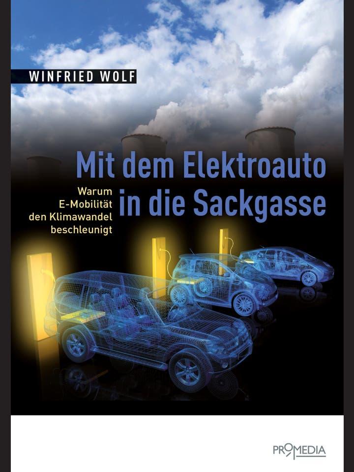 Winfried Wolf: Mit dem Elektroauto in die Sackgasse