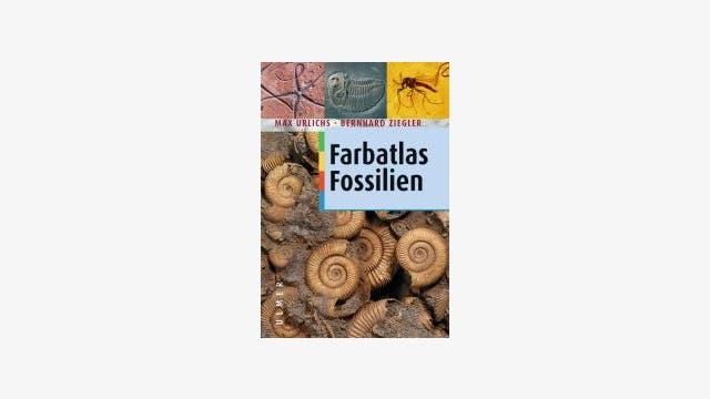 Max Urlichs und Bernhard Ziegler: Farbatlas Fossilien