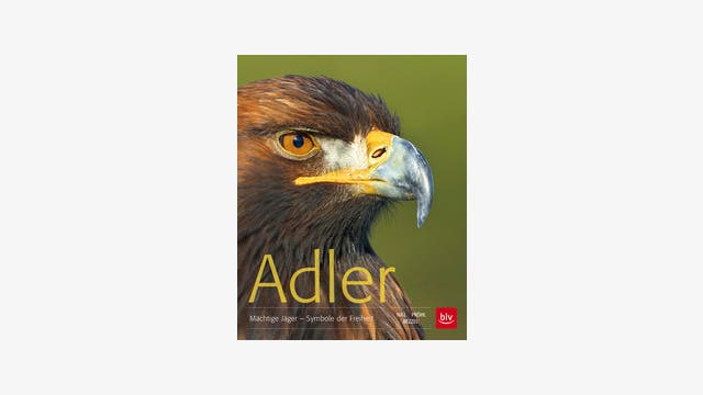 Einhard Bezzel, Dietmar Nill, Torsten Pröhl: Adler
