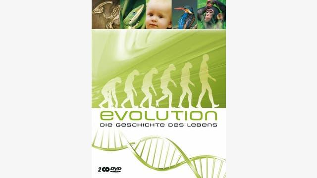 polyband: Evolution