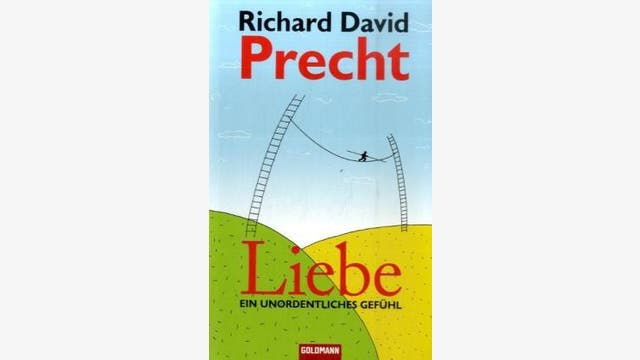 Richard David Precht : Liebe