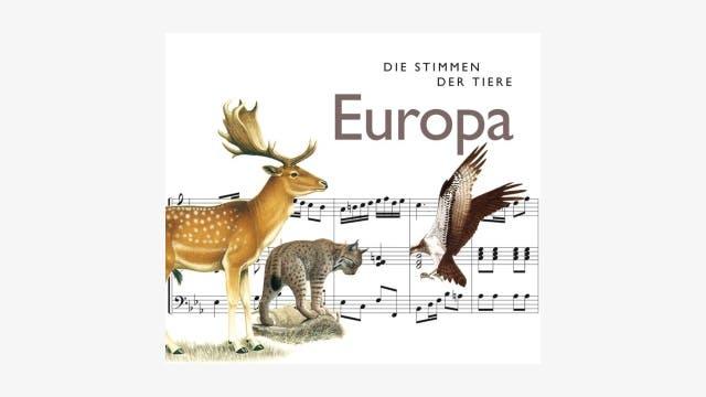 Cord Riechelmann (Hrsg.): Die Stimmen der Tiere