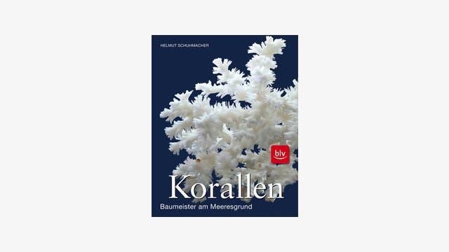 Helmut Schuhmacher: Korallen. Baumeister am Meeresgrund