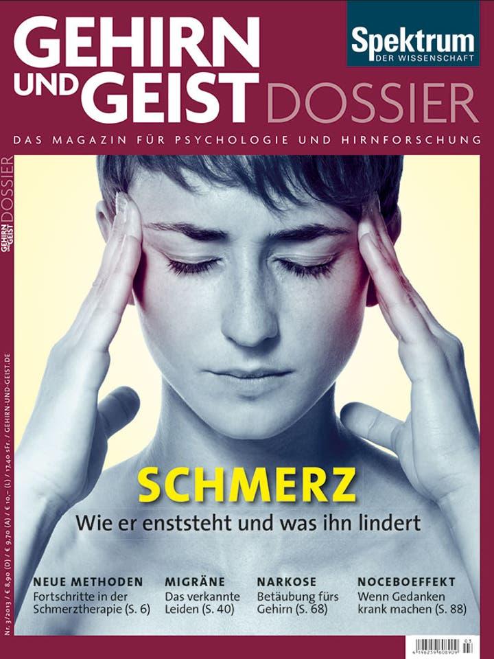 Dossier 3/2013