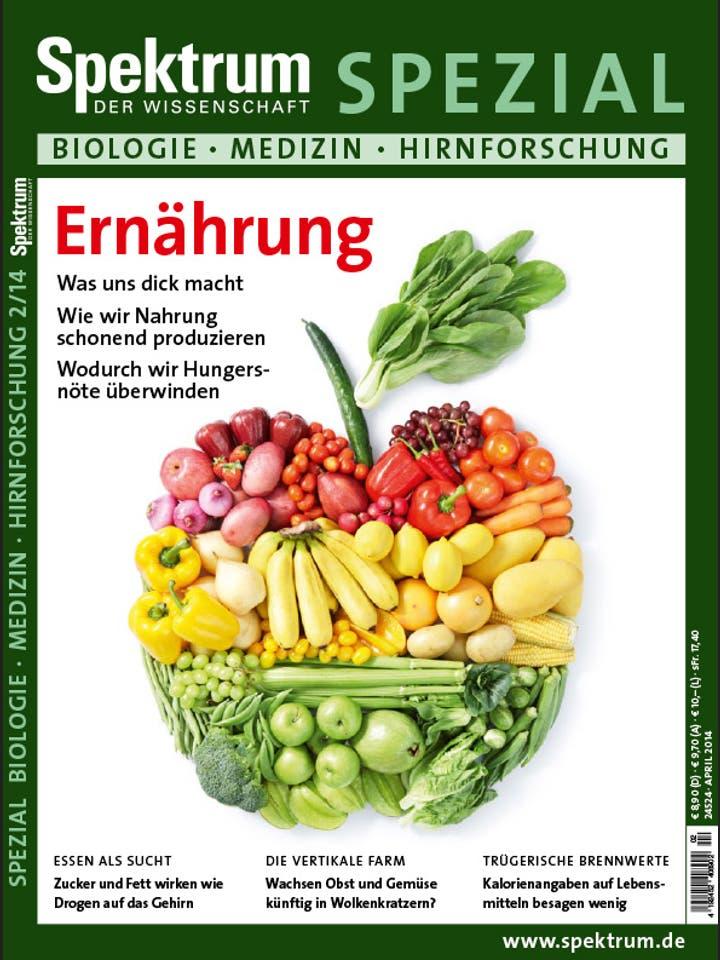 Spezial Biologie - Medizin - Hirnforschung 2/2014