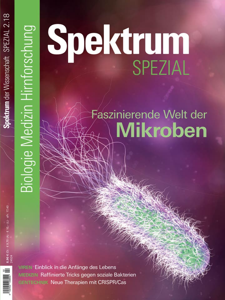 Spezial Biologie - Medizin - Hirnforschung 2/2018