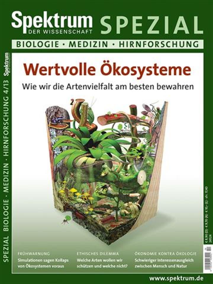 Spezial Biologie - Medizin - Hirnforschung 4/2013