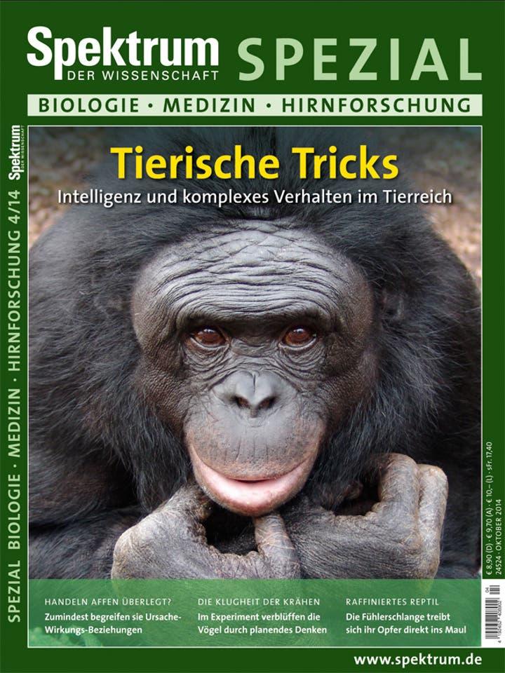 Spektrum der Wissenschaft Spezial Biologie – Medizin – Hirnforschung 4/2014<br /> Tierische Tricks
