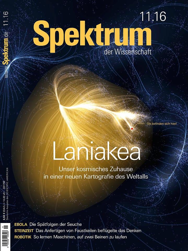 Heftcover Spektrum der Wissenschaft November 2016