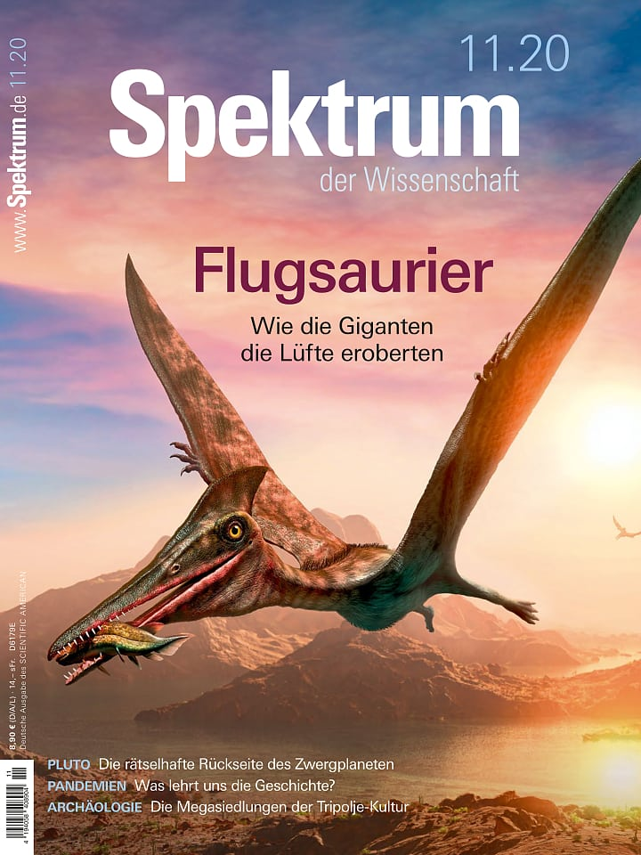 Heftcover Spektrum der Wissenschaft November 2020