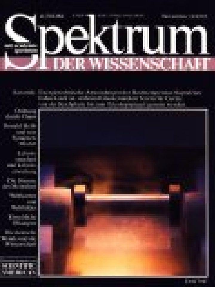 11 / 1993