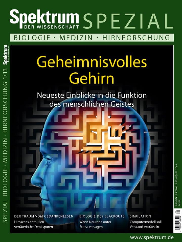 Spezial Biologie - Medizin - Hirnforschung 1/2013