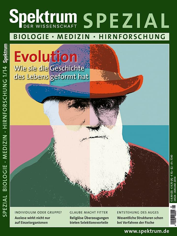 Heftcover Spektrum der Wissenschaft Spezial Biologie – Medizin – Hirnforschung 1/2014 Evolution