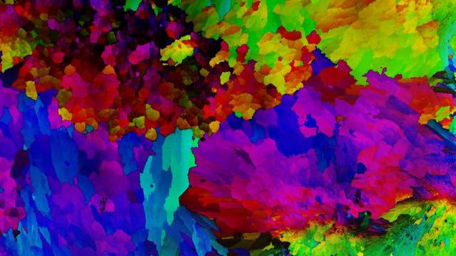 Farbig markierte Domänen im Kalkskelett einer Koralle, die aus separat hergestellten Klümpchen hervorgehen.