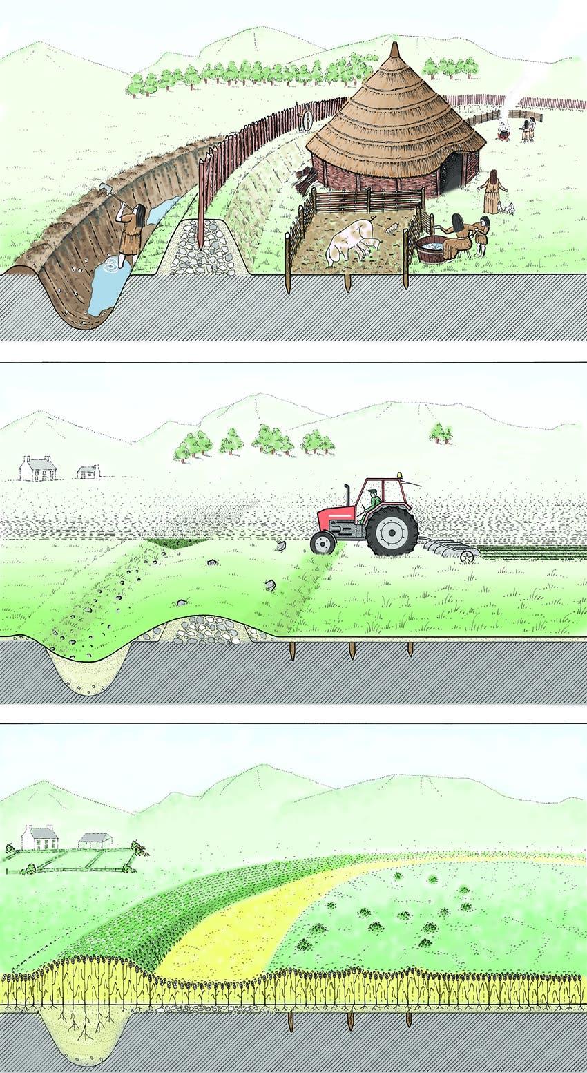 Wie sich alte Strukturen in der Vegetation abzeichnen