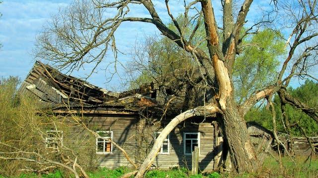 Verfallendes Haus im Sperrgebiet von Tschernobyl