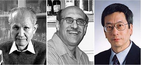 Die Chemie-Nobelpreisträger 2008