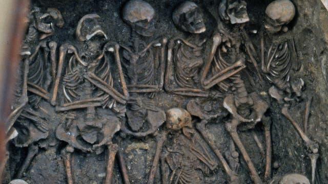 Skelette in einem Massengrab