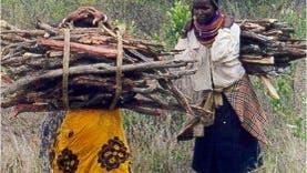 Frauen beim Holzsammeln