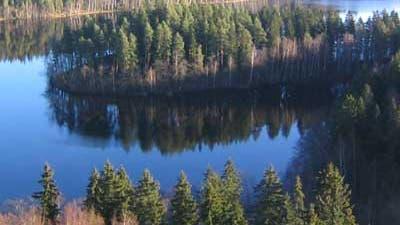 Finnische Waldeinsamkeit
