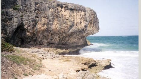 Korallen-Terasse, Barbados