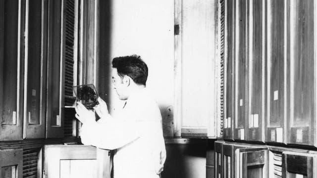 Die Präparatesammlung des Kaiser-Wilhelm-Instituts für Hirnforschung umfasste mehr als 110000 Hirnschnitte und andere Gewebeteile, die von ermordeten Patienten stammen.