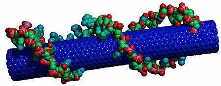 Nanoröhrchen mit DNA