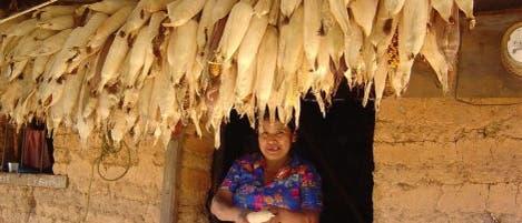 Maisbäuerin in Oaxaca