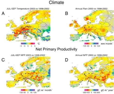 Klima und Fotosynthese 2003