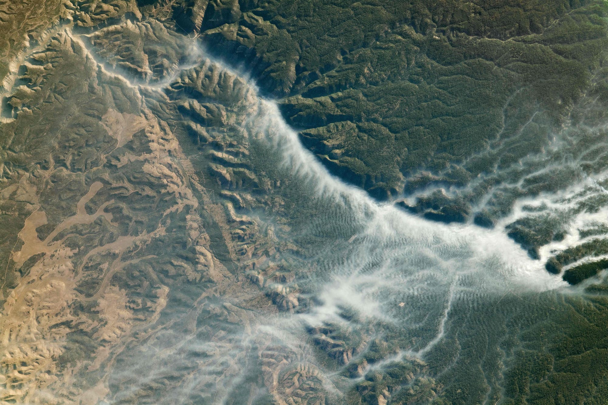 Waldbrände in Arizona von der ISS aus gesehen