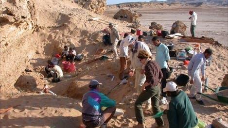 Ausgrabung am Wadi Gawasis
