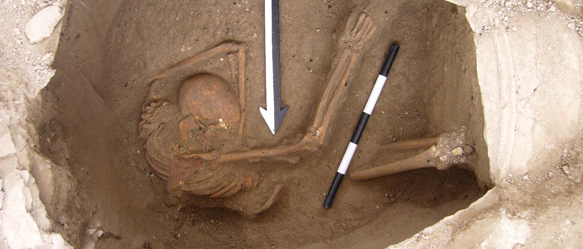 Skelett aus der Untersuchung zu den Kanaanitern