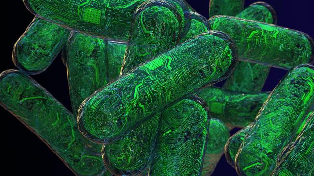Grafische Darstellung von biologischen Computern