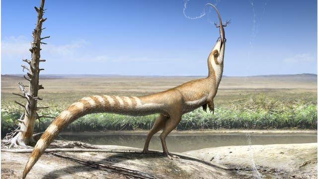 Sinosauropteryx (künstlerische Darstellung)