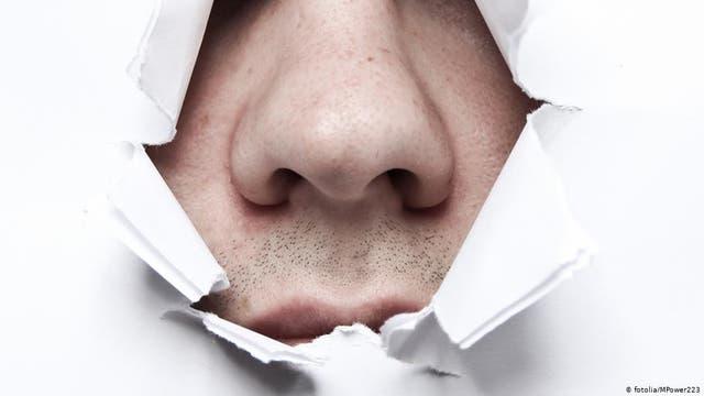 Warum haben wir zwei Nasenlöcher?