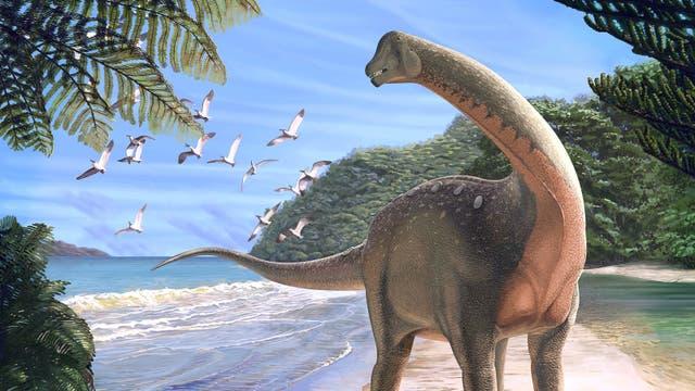 Rekonstruierter Titanosaurier Mansourasaurus shahinae