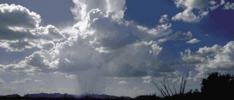 Cumuluswolken über Organ Pipe Cactus (Arizona)