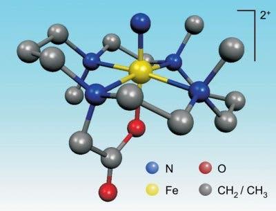 Die Struktur des Nitrido-Komplexes