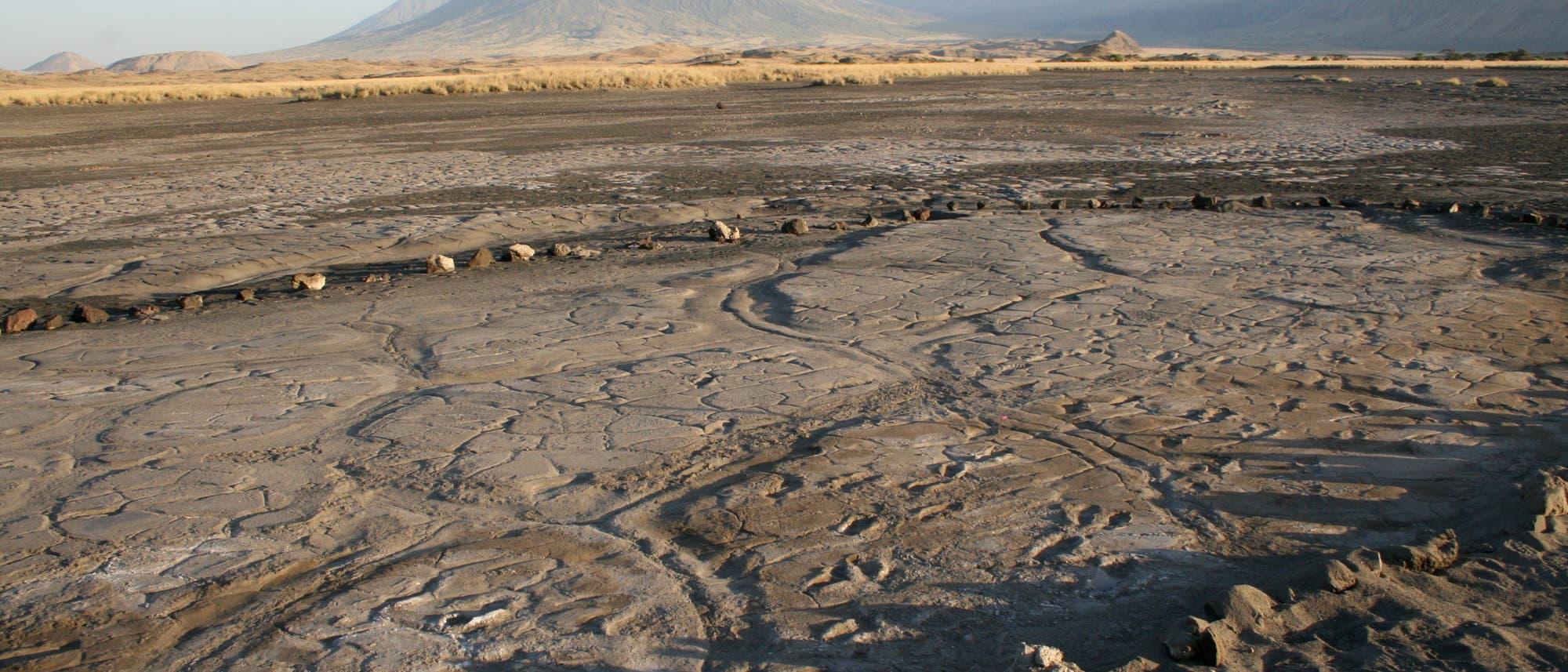 Der Fußspur-Fundplatz Engare Sero in Tansania. Die 408 Abdrücke im Vulkanschlamm entstanden vor bis zu 19.100 Jahren.