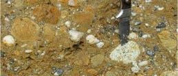 Eozäne Sedimente