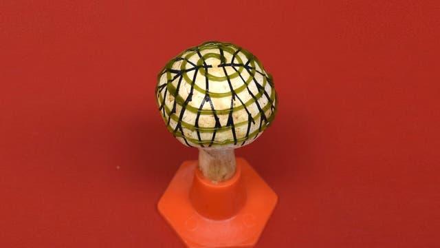 Auf den Hut des Pilzes ist ein hübsches Muster aus Linien und Spiralen gedruckt, das Strom erzeugt.