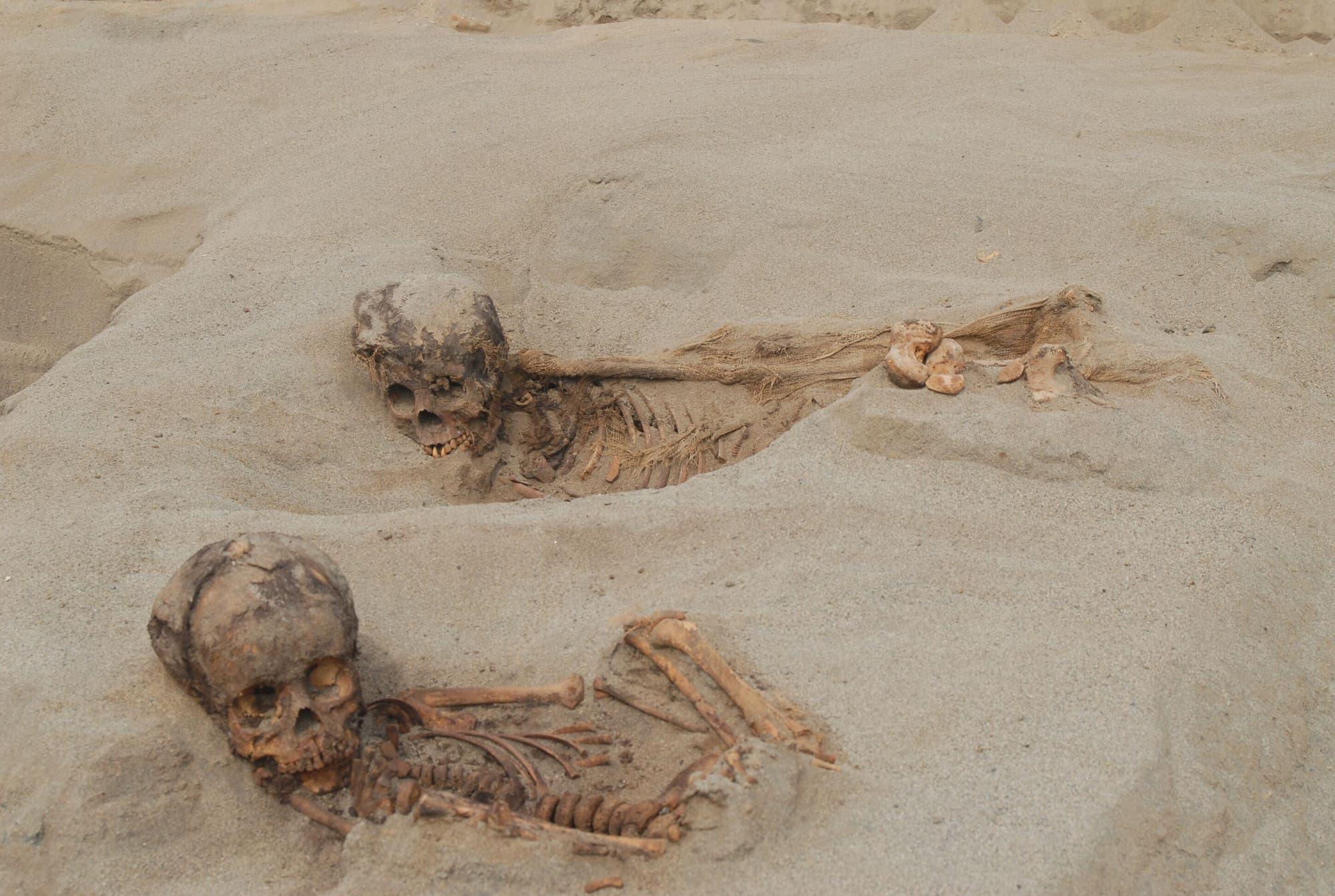 Skelette in der Wüste
