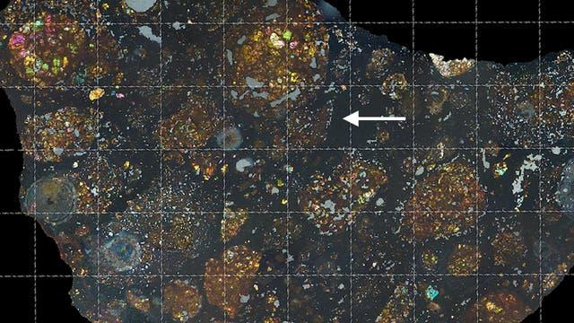 Der Mutterkörper von LaPaz Icefield 02342 wurde nach seiner Entstehung kaum verändert. Der Pfeil im Bild zeigt auf die Stelle in diesem Dünnschliff, an der das winzige Kometenbruchstück verborgen ist.