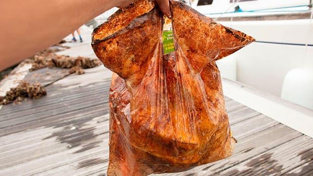 Biologisch abbaubarer Kunststoffbeutel nach drei Jahren im Meerwasser
