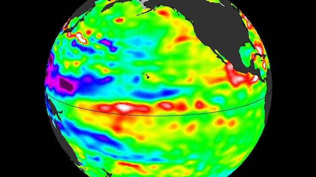 Wassertemperaturen im Pazifik im August 2014