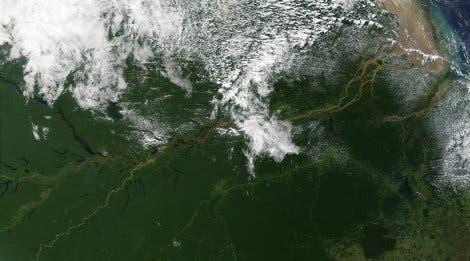 Amazonas aus dem All
